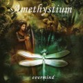СD Amethystium - Evermind / Enigmatic - New Age, Ethno Ambient  (Jewel Case)
